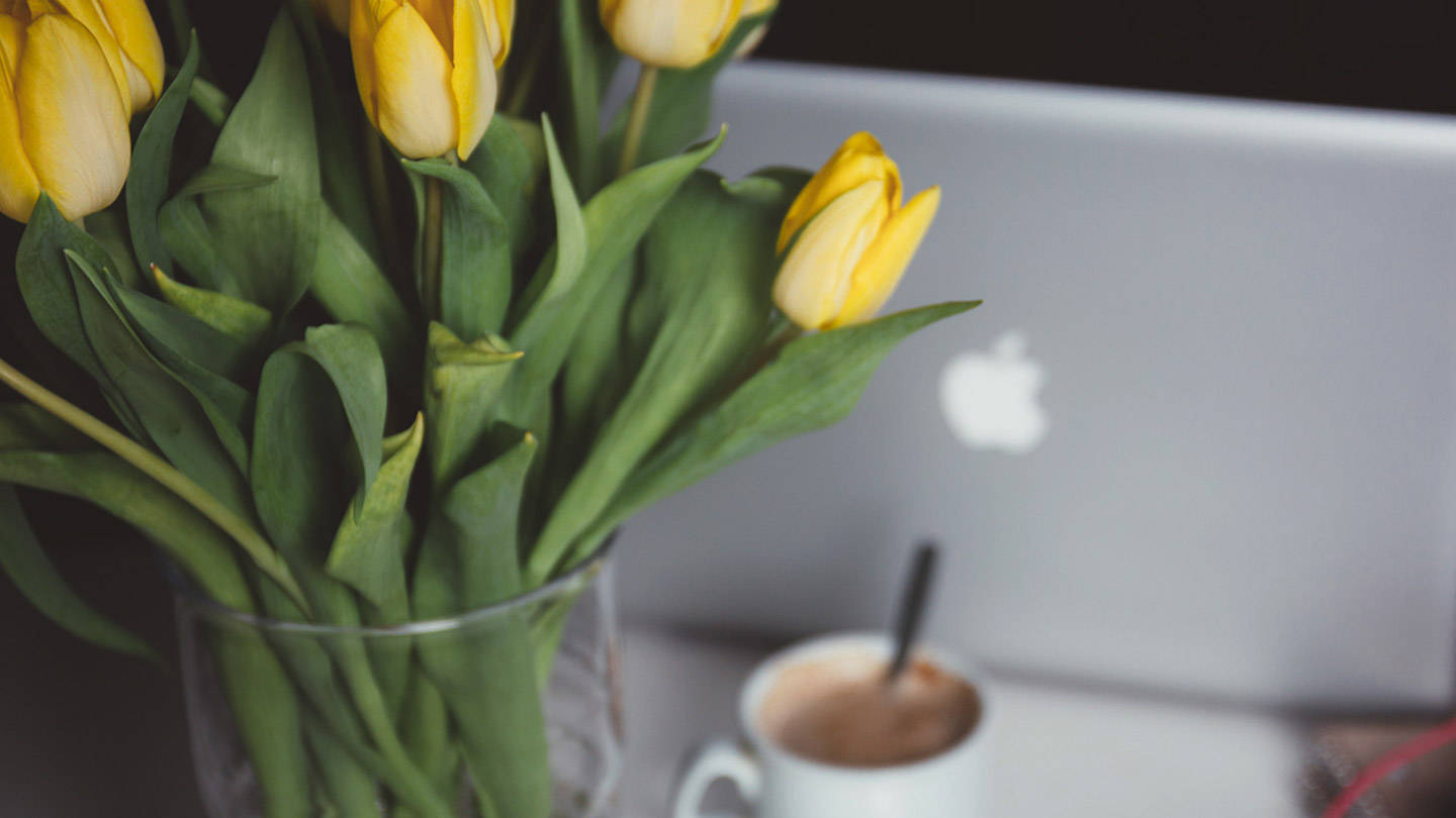 LOTTE CITY WEEK