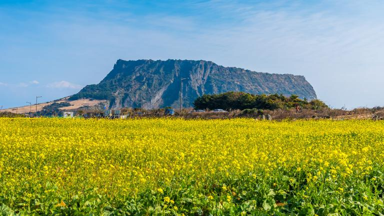 jeju, Tourist Attractions