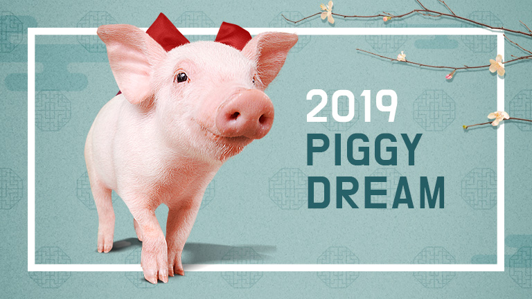 2019 PIGGY DREAM