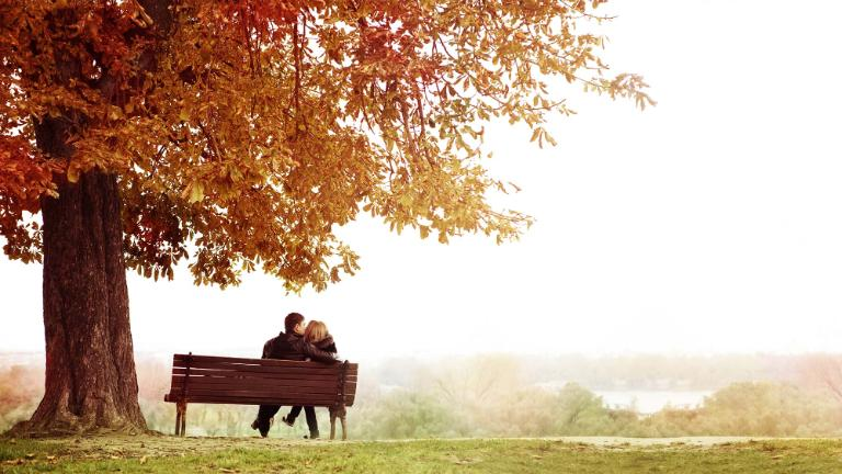 Young Couple Sitting and Kissing on a Bench in the Beautiful Autumn Day