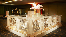 Lotte Hotel Ulsan WEDDING HALLS Concept ICE CARVING